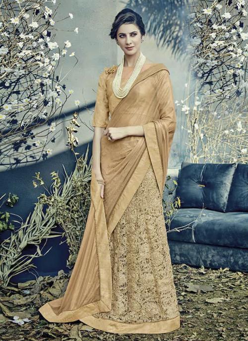 Reception Wear Beige Lycra Net Embroidery Work Saree